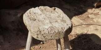 Birkenbihl Methode - Zweibeiner sitzt auf einem Dreibeiner...